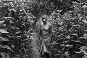A man stands amidst jute plantation, the most important crop in the enclaves. The enclave dwellers survive mainly from subsistence farming.