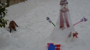 Snowman and fox. Photo: Louise Selman