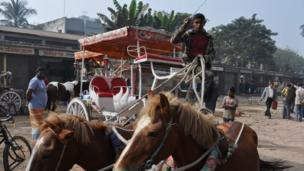 Boy with horses and carriage in Dhaka