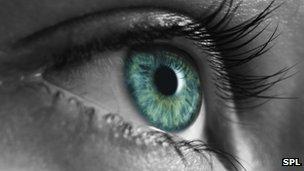 queenu002639s university belfast led drug study u002639could save 84mu002639 bbc news eye drug could save nhs 84m 304x171