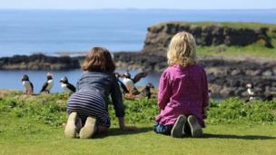 Children watching puffins