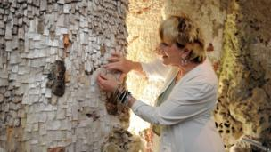 Lady Lucinda Lambton places the last crystal into the stalactite decoration at Painshill Park