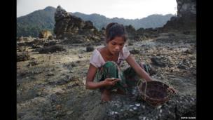 A woman gathers shells