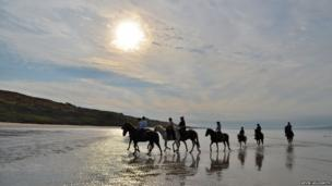 Horse riders on a beach