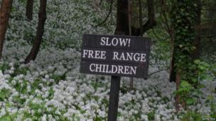 Sign saying: Slow! Free range children