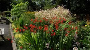 Meersbrook Walled Garden, Sheffield