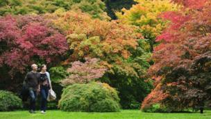 People enjoy the emerging Autumn colours at the Westonbirt National Arboretum near Tetbury, Gloucestershire.