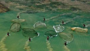 Fishermen casting their nets in a water body