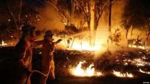 Firefighters fighting a bushfire at the Windsor Downs Nature Reserve, near Sydney, Sept. 2013