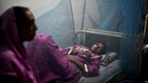 A Pakistani woman, looks after her daughter suffering from the mosquito-borne disease, dengue fever, while laying in bed covered with a net at an isolation ward of a hospital in Rawalpindi, Pakistan, Thursday, Oct. 24, 2013