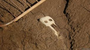 Face shape in the ground