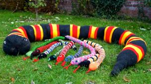 Ten snakes a hissing - courtesy of Paignton Zoo's volunteer knitters