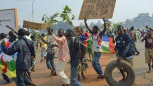 Anti-Seleka demonstrators holding a placard reading