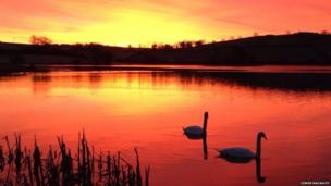 Finally, BBC News NI's Conor Macauley photographed these two swans swimming in the rising sun on Loughbrickland Lake in County Down.