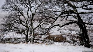 A snow covered scene near Allendale in Northumberland
