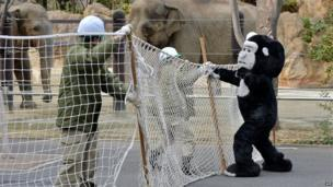 Zookeepers during a practice drill in Tokyo (6 February 2014)