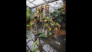 """Horticulturalist Ellie Biondi arranges plants in the new exhibition """"Orchids"""" in the Princess of Wales Conservatory at the Royal Botanic Gardens, Kew"""