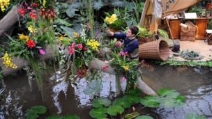 """Horticulturalist Alex De Hoyle arranges plants in the new exhibition """"Orchids"""" in the Princess of Wales Conservatory at the Royal Botanic Gardens, Kew"""