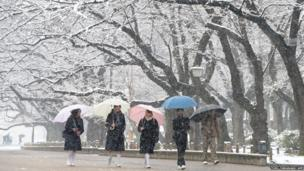 Students walk under snow covered trees at a park in Tokyo