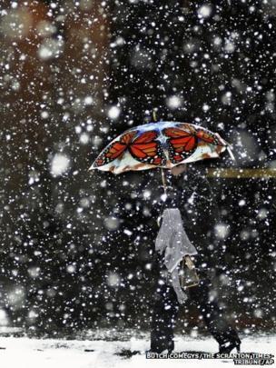 A pedestrian walks along Adams Avenue with her colourful umbrella of monarch butterflies during a brief snow storm in Scranton, Pennsylvania