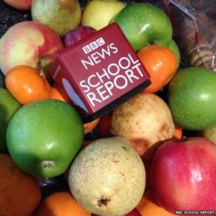 School Report mic cube in bowl of fruit