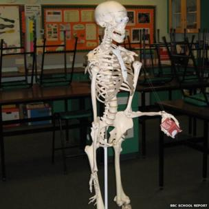 Skeleton model holds the school report mic cube