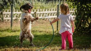 A girl sprays her dog with a hose.