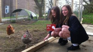 School Reporters Sophie and Chloe pose with hens, Biscuits and Tina Turner.