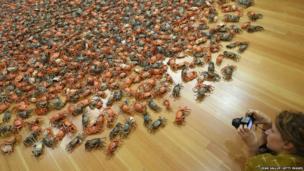 Crabs by artist Ai Weiwei