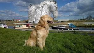 Tevin and The Kelpies
