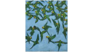 Lost Glory - Carolina Parakeets by Darren Rees