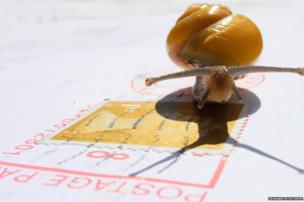 Snail and a letter