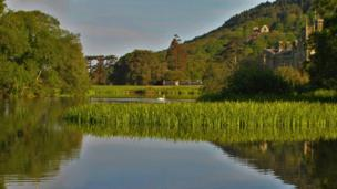 Early morning at Margam Country Park