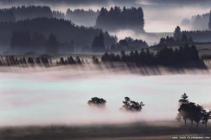 Morning fog glows above the Alpine foothills near Bernbeuren, Germany