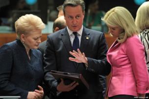 Lithuania's President Dalia Grybauskaite (left) talks with British Prime Minister David Cameron and Denmark's Prime Minister Helle Thorning-Schmidt