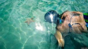 Swimming in Starfish Beach