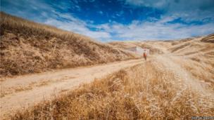 Footpath in Marin County