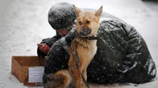 Бездомный с собакой