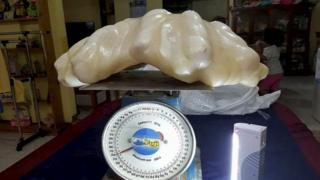 The giant pearl is said to weigh 34kg (74lb)