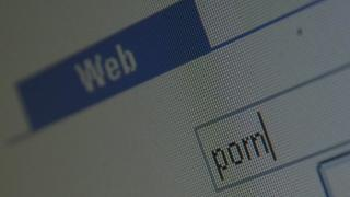 Web browser search for porn