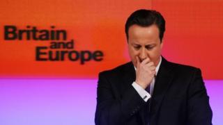 David Cameron's Bloomberg speech