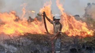 A fireman works to contain a wildfire on a field in Ogan Ilir, South Sumatra, Indonesia