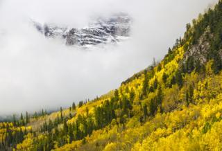 Mountain Fog by Anil Sud