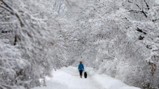 A woman walks a dog on a snow-covered path