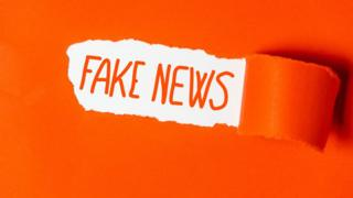 fake-news-in-words