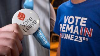 Vote Leave and Stronger In campaign material