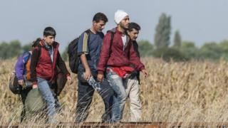 Migrants walk at the railway crossing at the border between Hungary and Serbia near Roszke - 25 August 2015