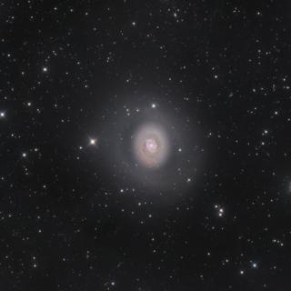 M94: Deep Space Halo by Nicolas Outters