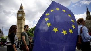 Man holding an EU flag in Westminster