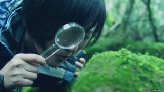 A Japanese woman examining moss with a magnifying glass